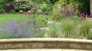 Hertfordshire garden design with Poppies, Alliums and grasses.