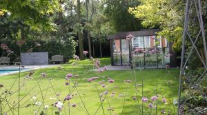 Garden and planting by Amanda Broughton Garden Design