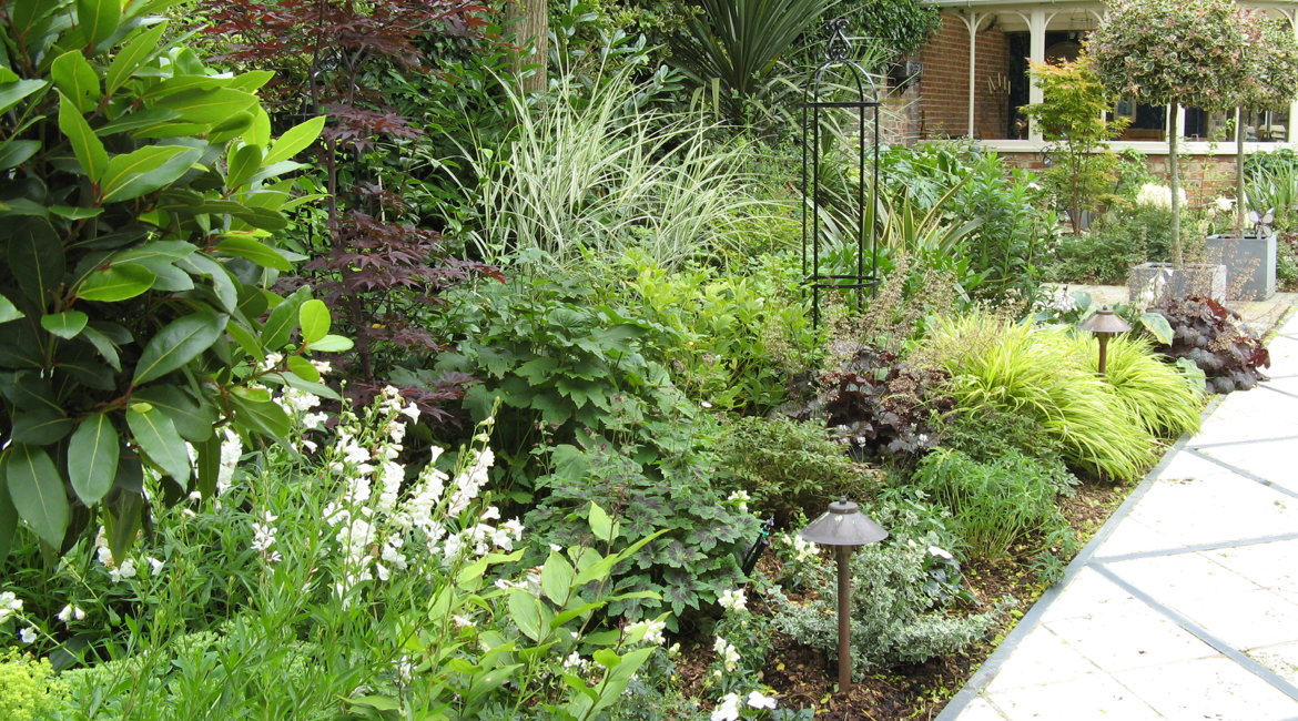 Hadley Wood garden design with purples and greens by Amanda Broughton
