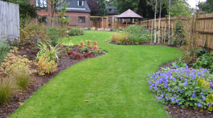 North London garden design with lawn and herbaceous borders