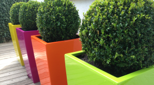 Contemporary garden make-over by Amanda Broughton Garden Design