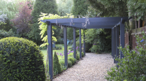 Stunning planting, pergola and garden in Hadley Wood