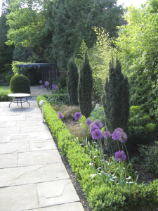 Paving and Planting in Hadley Wood garden design - North London