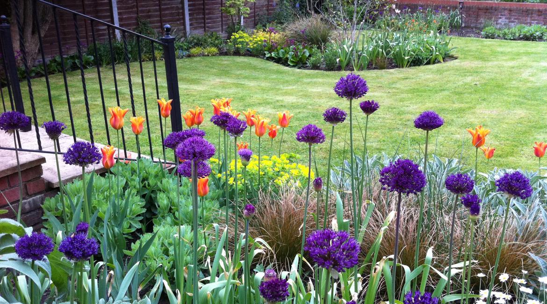 Totteridge Lane garden, design by Amanda Broughton