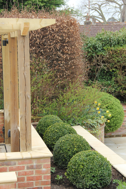 A raised bed about to spring into life! By Amanda Broughton Garden Design