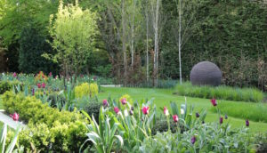 Contemporary new build Hertfordshire garden design and planting by Amanda Broughton Garden Design