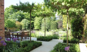 Contemporary new build garden design and planting in Hertfordshire by Amanda Broughton
