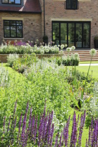 Contemporary new build garden design and planting in Harpenden by Amanda Broughton