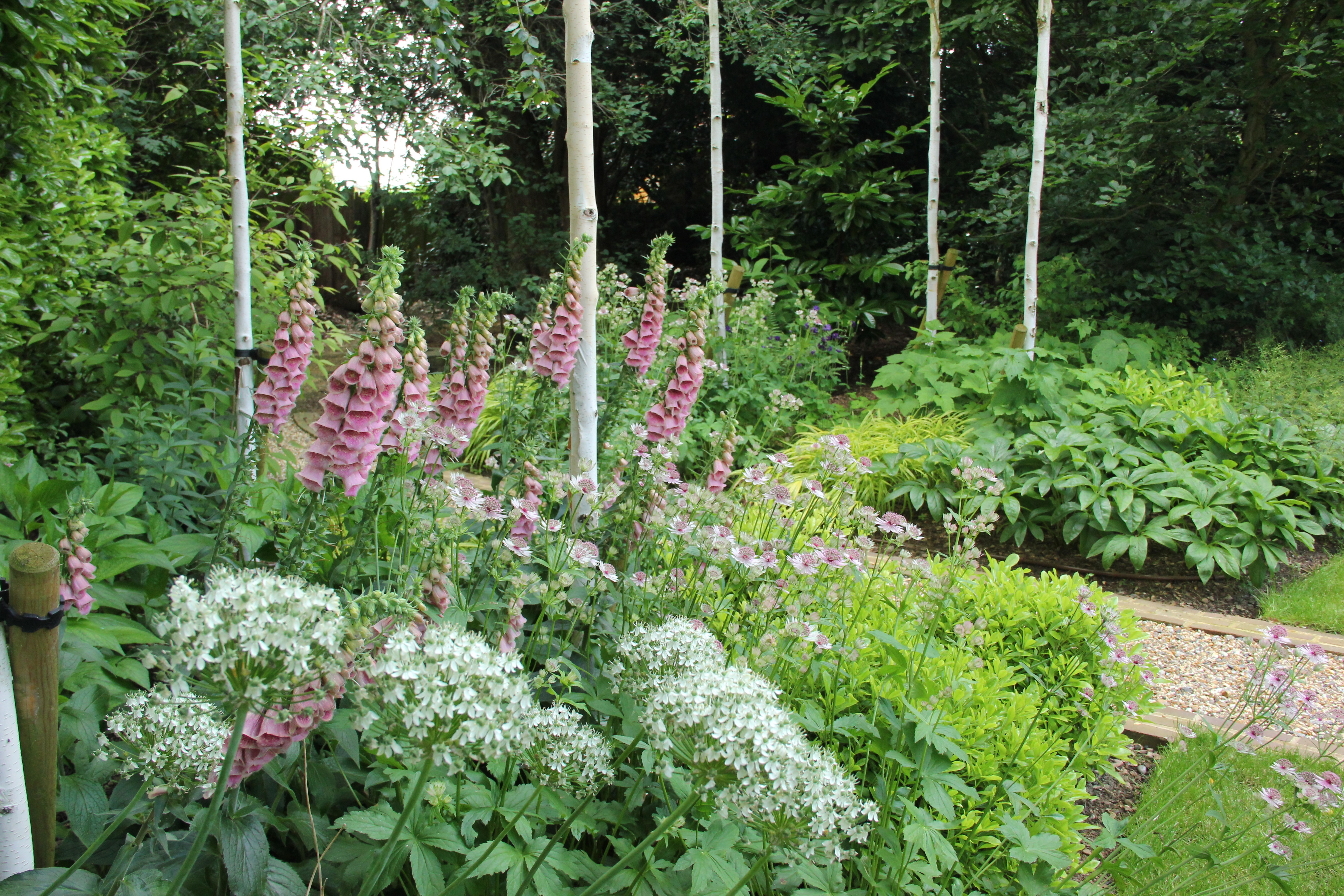 St Albans traditional style country garden design by Amanda Broughton