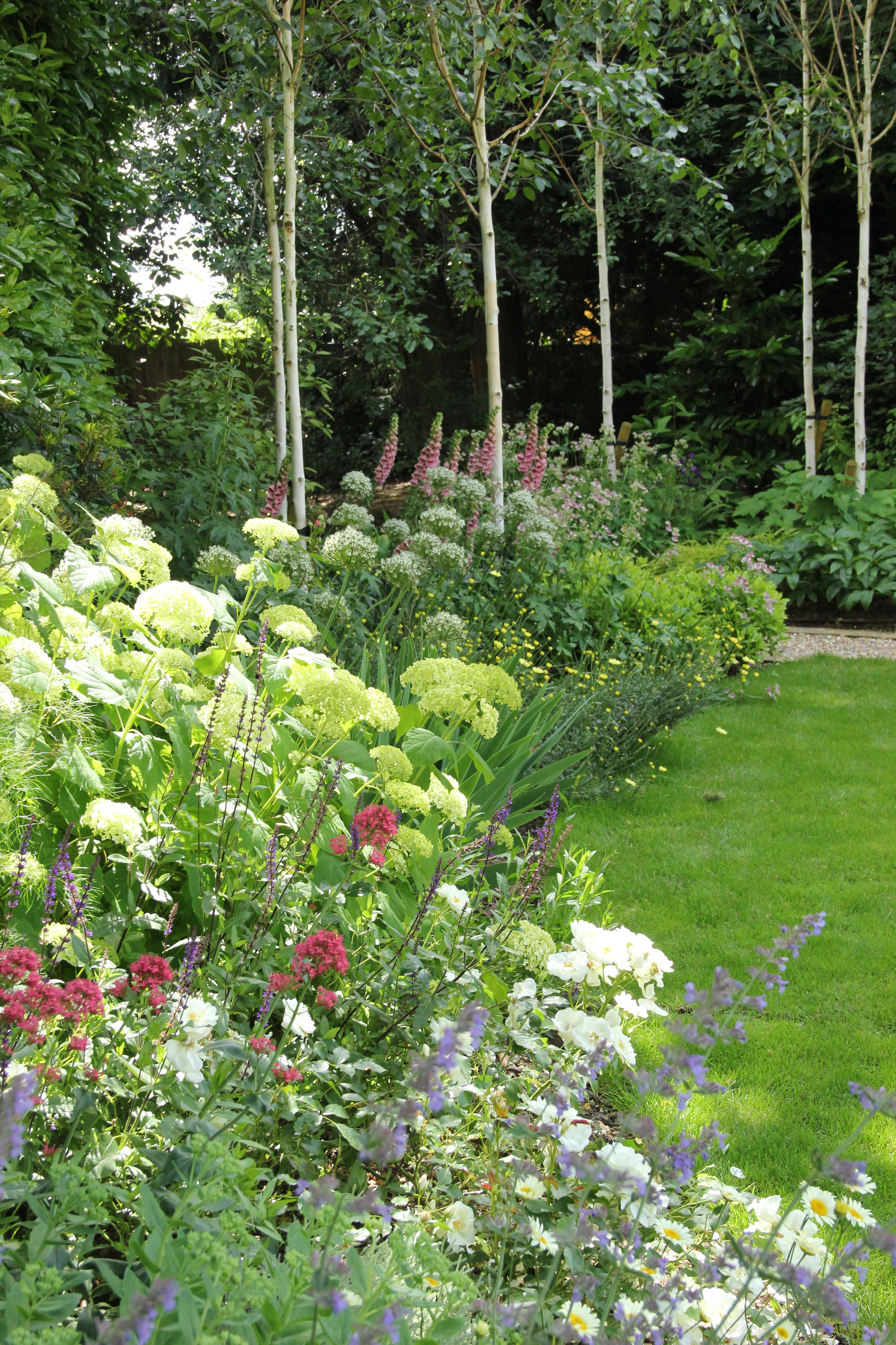 St Albans garden design with traditional country style planting