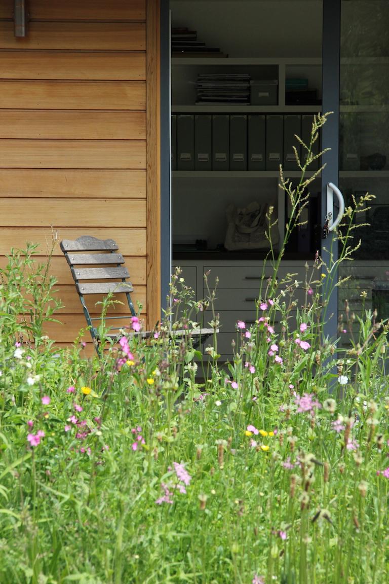 Herts. Garden Office meadow in flower by Amanda Broughton Garden Design