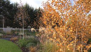 Country Garden by garden designer Amanda Broughton
