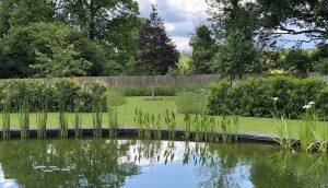 Hertfordshire Country Garden design - wildlife pond by day