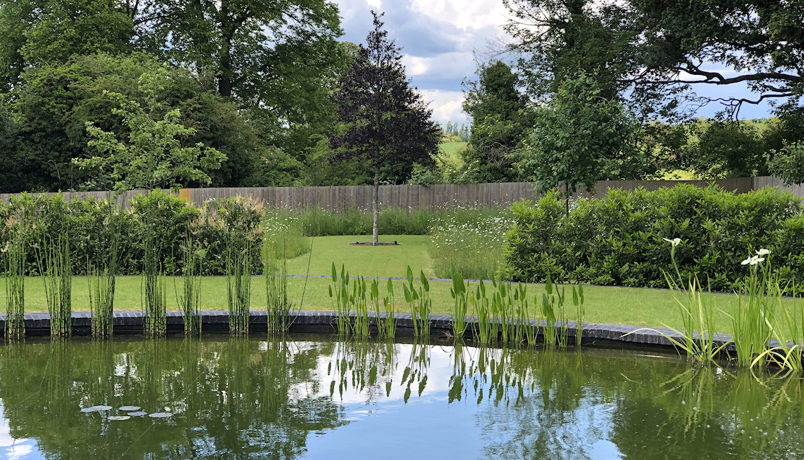 Hertfordshire Country Garden design - wildlife pond by day